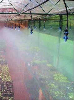 Controle climático com o nebulizador Green Mist